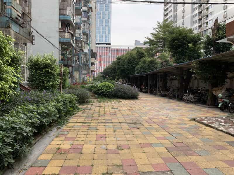珠江大家庭花园租房信息