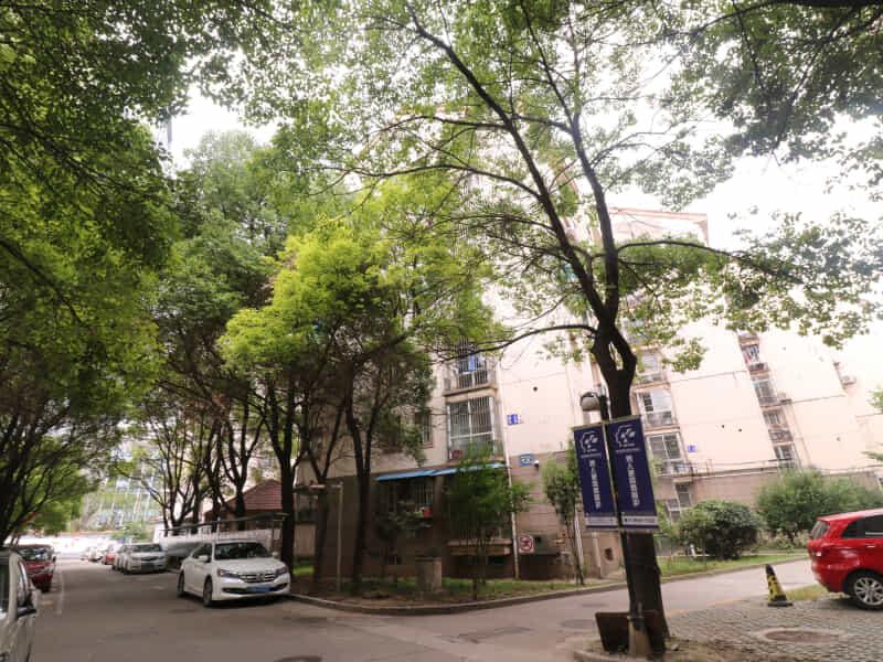 新庄花园租房信息