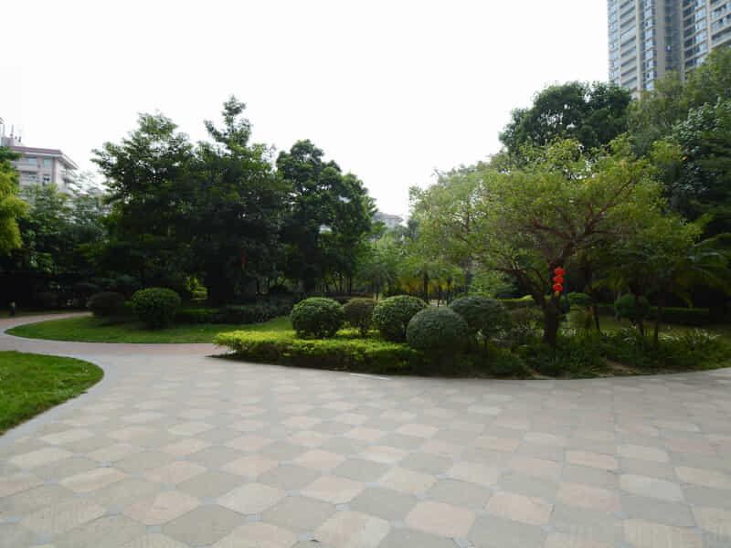 珠岛花园租房信息