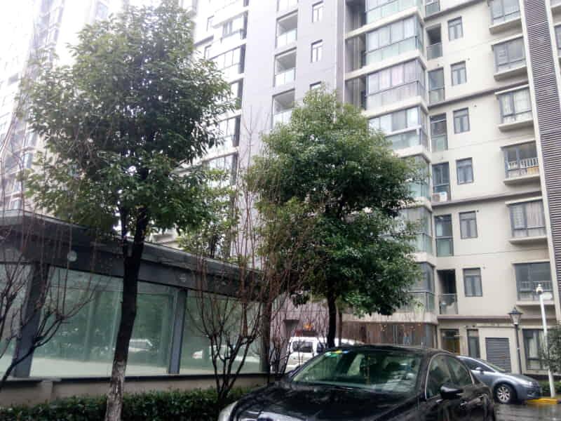 华南国际广场房源出租信息