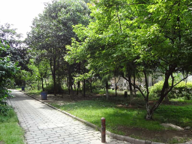 清江花苑绿茵园房源出租信息