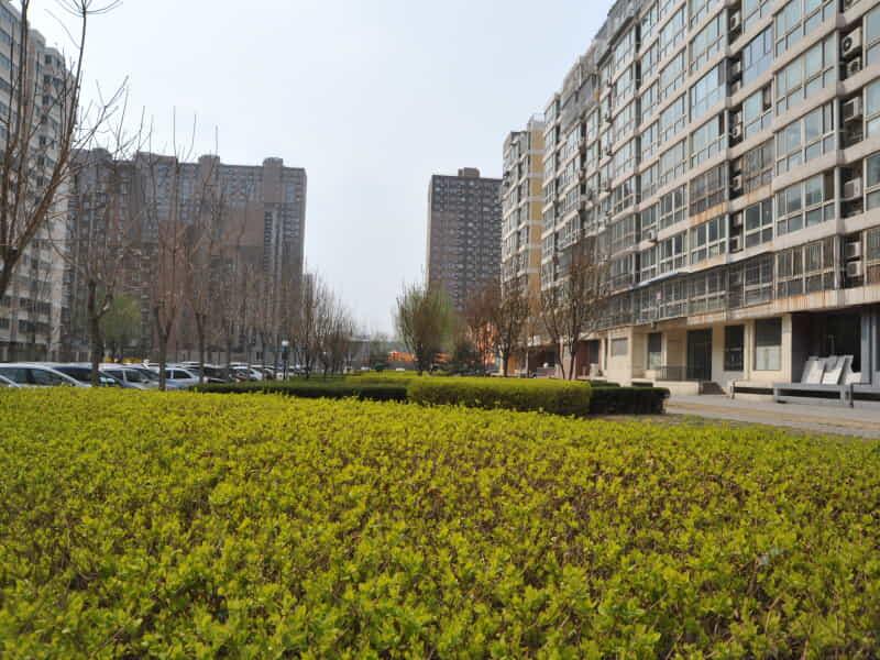 政馨园二区租房信息