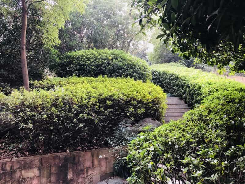 保利花园租房信息