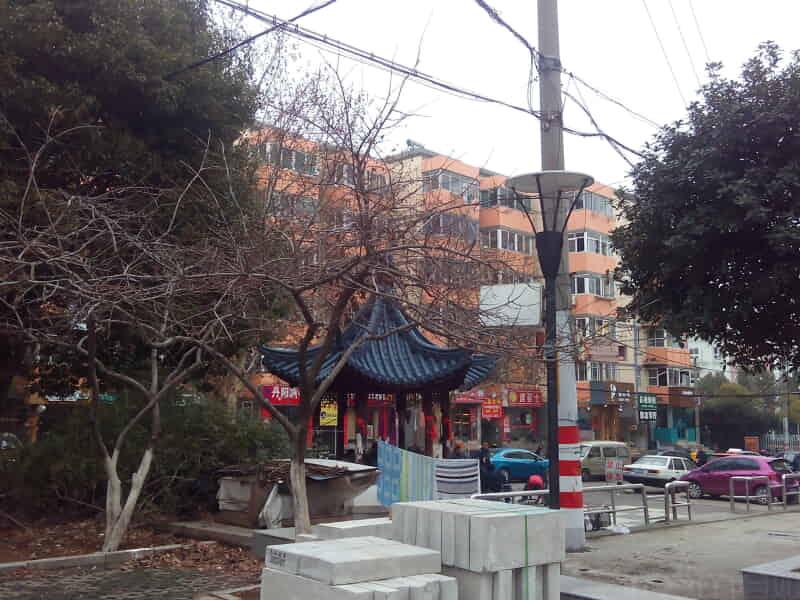 仙林新村北区房源出租信息