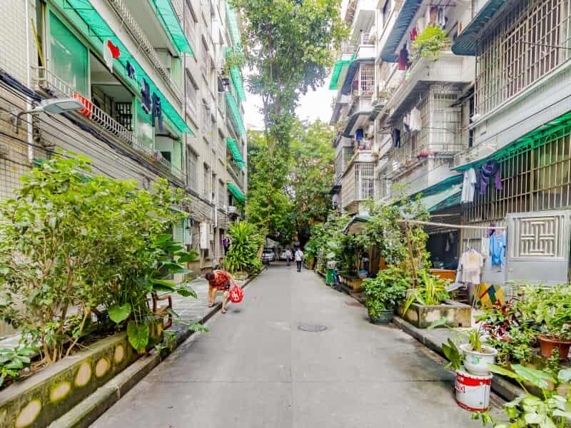 建设路先烈南路青菜东街租房房源出租信息