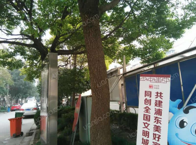 黄山新村租房信息