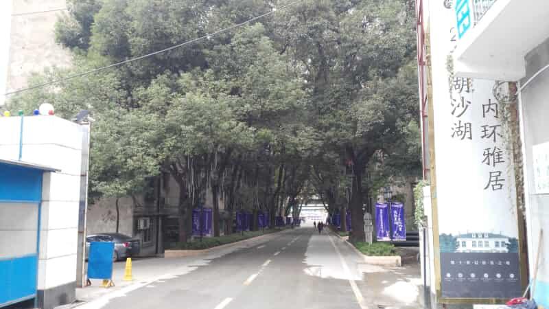 楚河汉街楚天都市雅园租房房源出租信息