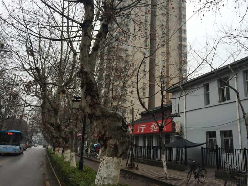 成贤街租房信息