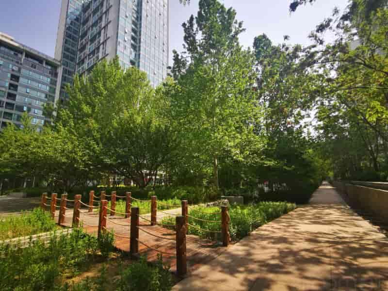 CBD华贸国际公寓租房房源出租信息
