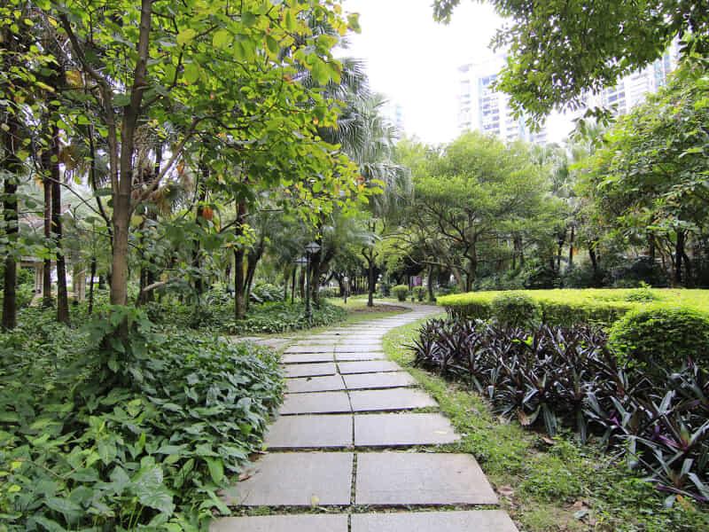 珠江新城东南国花园租房房源出租信息