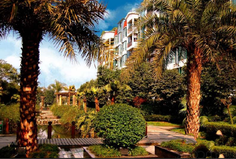 新北美洲花园棕榈湾租房房源出租信息